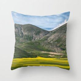 The fields of Castelluccio Throw Pillow