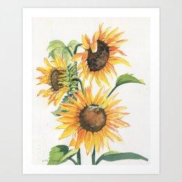 Sunny Sunflowers Art Print