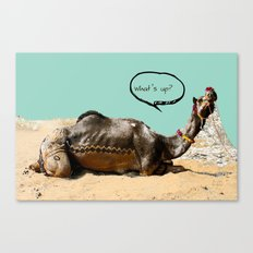 Pushkar fair chillout Canvas Print