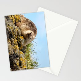 Seal at Dunvegan Castle, Scotland Stationery Cards