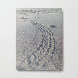 Turtle tracks Metal Print
