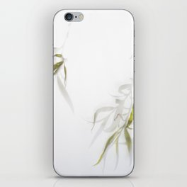 Veiled Willow iPhone Skin