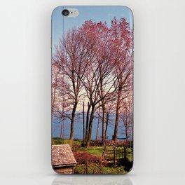 Fire Red Trees iPhone Skin