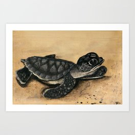 Tiny Tim (The Baby Sea Turtle) - acrylic on canvas Art Print