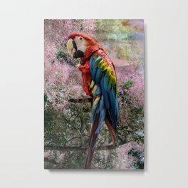 Red macaw parrot ara Metal Print