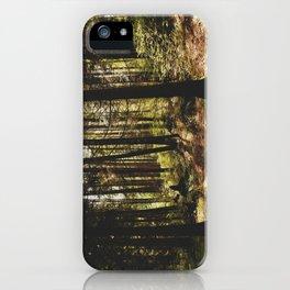 stanley park (3) iPhone Case