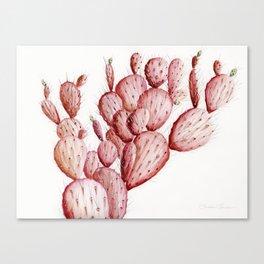 Pink Cacti Canvas Print