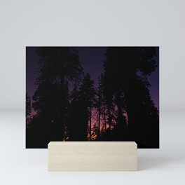 Sequioas Mini Art Print