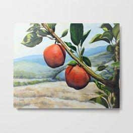 Gizdich Apples Metal Print