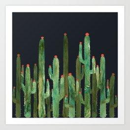 Cactus Four at night Art Print