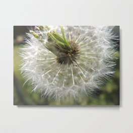 Close Your Eyes And Make A Wish Metal Print