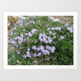 A Bushel of Purple Flowers Art Print