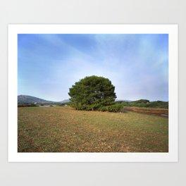Lonely bush. Art Print