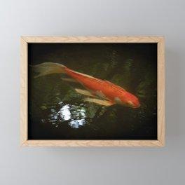Orange Butterfly Koi Framed Mini Art Print