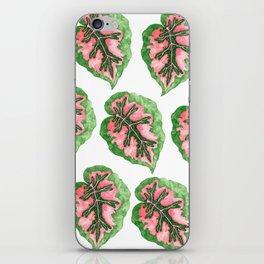 Begonia Leaf Pattern iPhone Skin