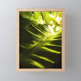 The Night Garden Green Framed Mini Art Print