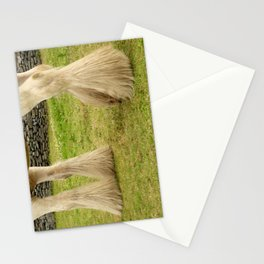 Feathered Feet Stationery Cards
