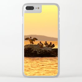 Summer Scene - Birds are resting on Stone - Sunset Sky Clear iPhone Case