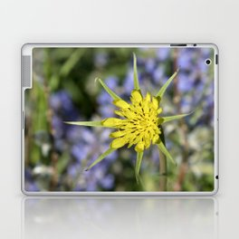 Yellow salsify wildflower against lupine Laptop & iPad Skin