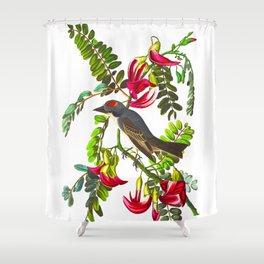 Piping Flycatcher Bird Shower Curtain