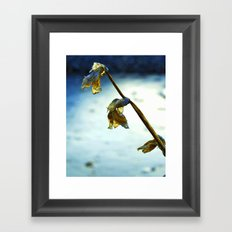 Frozen Flowers Framed Art Print