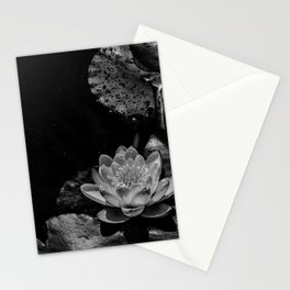 Water lily in a pond Stationery Cards
