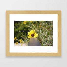 Little Yellow Framed Art Print
