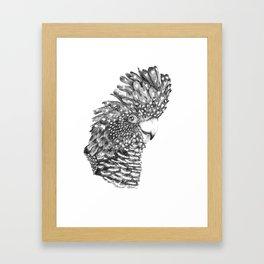 Black Cockatoo Portrait pen and ink Framed Art Print