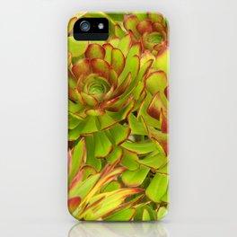 Beautiful Succulents iPhone Case