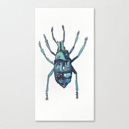 Blue Weevil Canvas Print