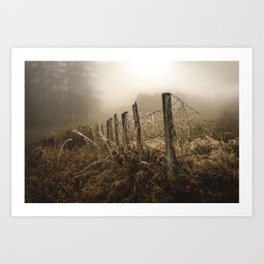 This Old Fence Art Print