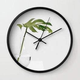 Single Monstera Leaf In Clear Glass Zen Minimalist House Plant Photo Wall Clock