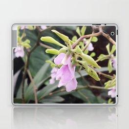 Epicyclia Mabel Kanda Flowers Laptop & iPad Skin