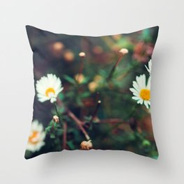 Camomile meadow nature background. Soft focus. Throw Pillow