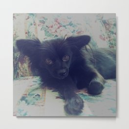 Annoyed Eevee Metal Print