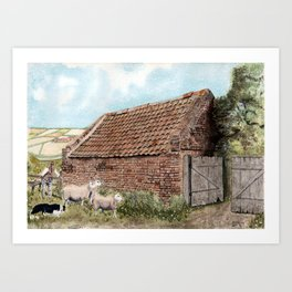 Farm Shed with Sheep Art Print