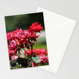 Longwood Roses Stationery Cards