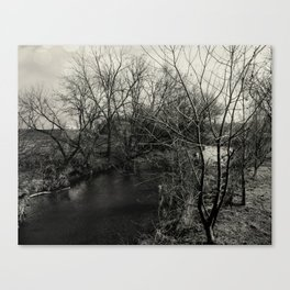 Creekside Black and White Canvas Print