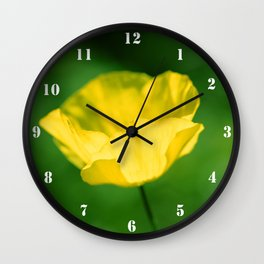 Meconopsis cambrica Wall Clock