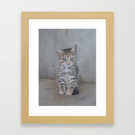 Grey Tabby Kitten Framed Art Print