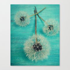 Three Wishes Canvas Print