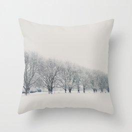a snow day in Cambridge Throw Pillow