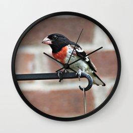 Male Rose-Breasted Grosbeak Wall Clock