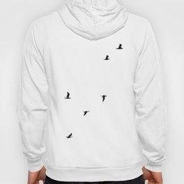 Seagull Sortie Hoody