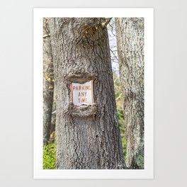 Parking Any Time Art Print