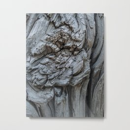 Abstract Tree Trunk Texture Metal Print