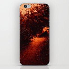 0409 iPhone Skin
