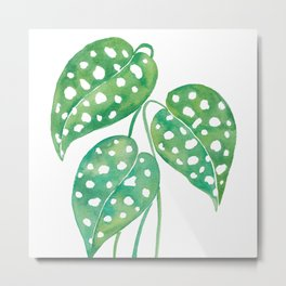 Leaves with Stains Metal Print