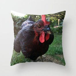 How Do We Co-Create New Stories Throw Pillow