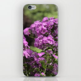 Butterfly Pink Flower in Butchart's Garden iPhone Skin